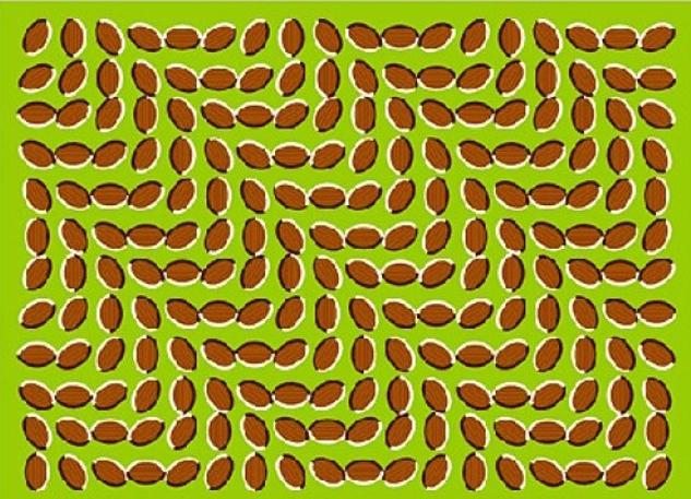 Optical illusions - SHIFTING